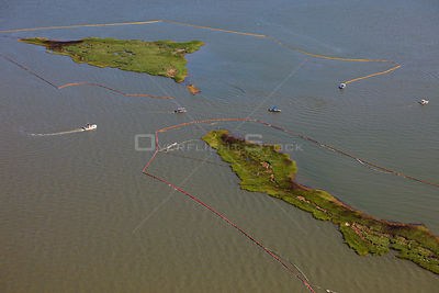 Aerial view of oiled bird nesting colonies in Barataria Bay area of the Mississippi River delta, with oil spill containment b...