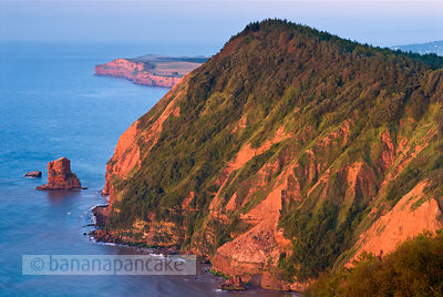 BP1321 - Ladram Bay, near Sidmouth