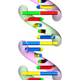 DNA abstract section #6