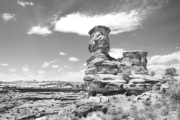 BIG SPRING CANYON OVERLOOK ORANGE ROCKS THE NEEDLES CANYONLANDS NATIONAL PARK UTAH BLACK AND WHITE