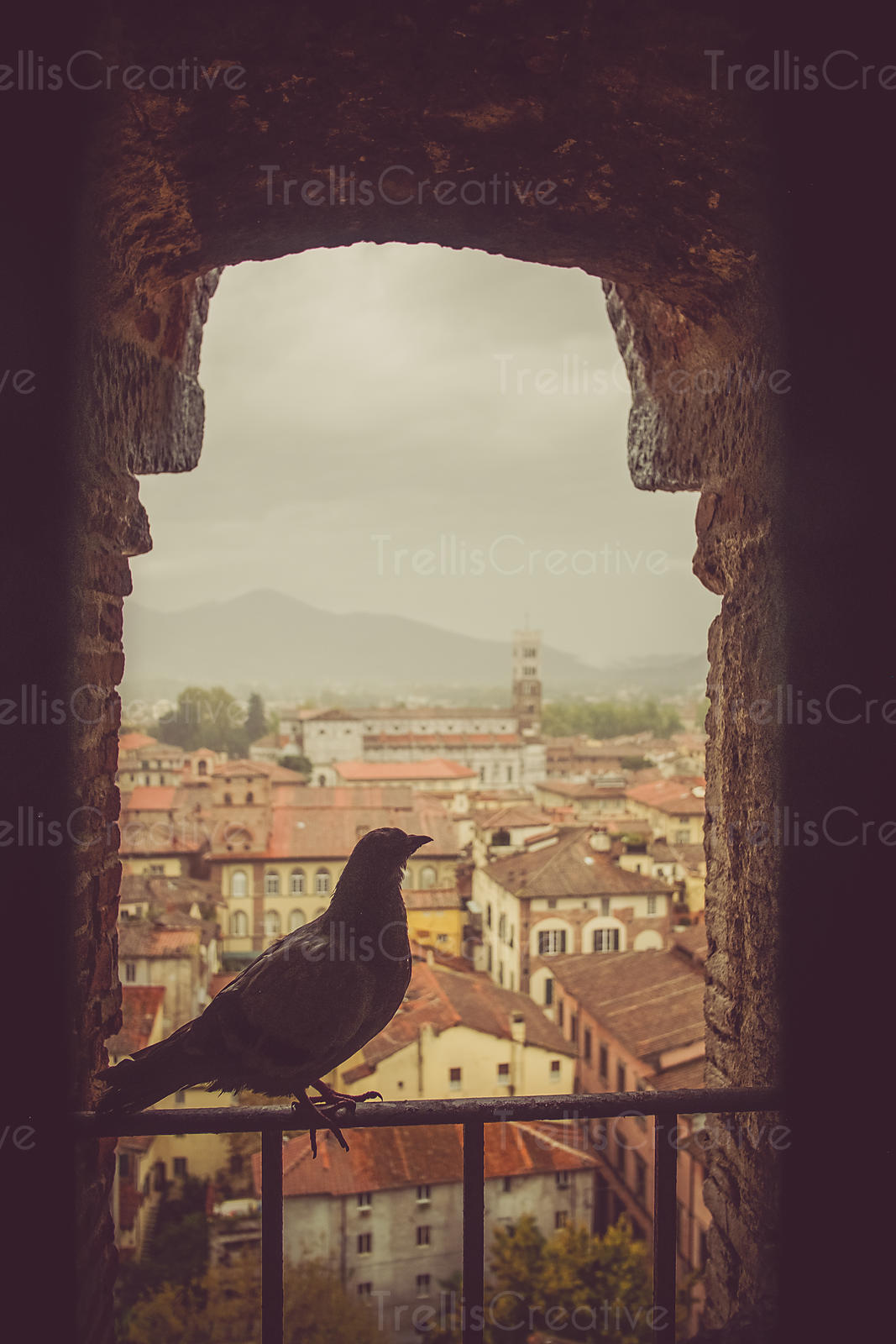 The walled city of Lucca, Italy