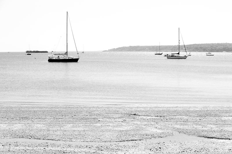 SAILBOATS GLOUCESTER CAPE ANN MASSACHUSETTS BLACK AND WHITE