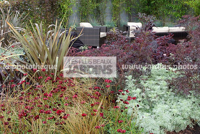 Terrasse contemporaine : Carex comans 'Bronze Perfection', Cosmos atrosanguineus 'Chocamocha' (cosmos chocolat), Phormium ten...