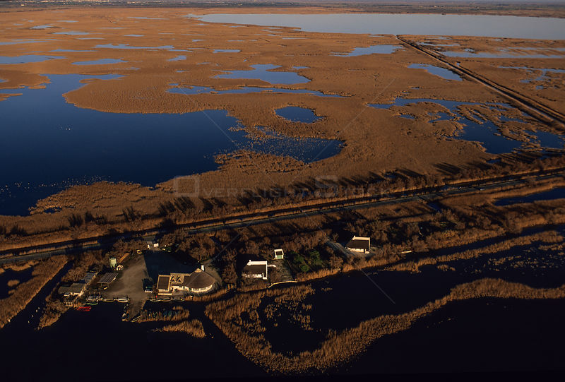 Aerial shot of houses in marsh land, Gallician marshes, Camargue, France.