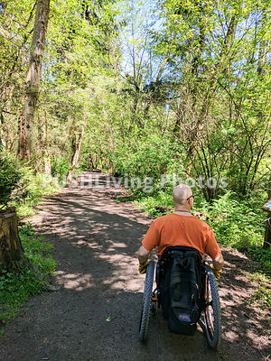 Man using a wheelchair on a forest trail