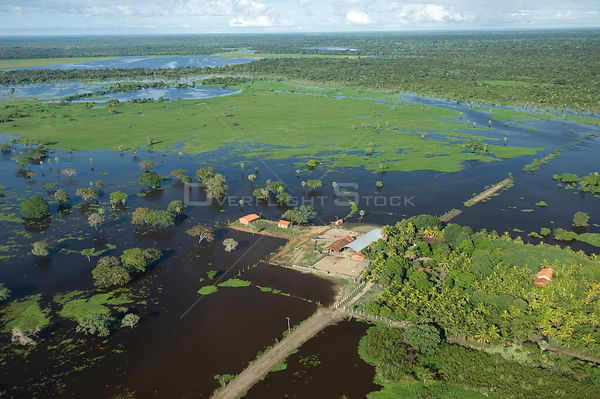 Aerial view of cattle farm isolated by the flood waters of the Mamore River, North of Trinidad city, capital of the Beni Depa...