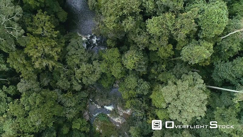 Top Down Drone Video Stream of Khao Yai National Park Jungle Wilderness Thailand