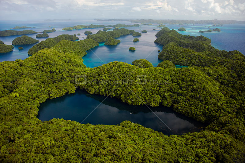Aerial view of Jellyfish lake, Ongeim'l Tketau, and surrounding rainforest, Palau, Micronesia. April 2009