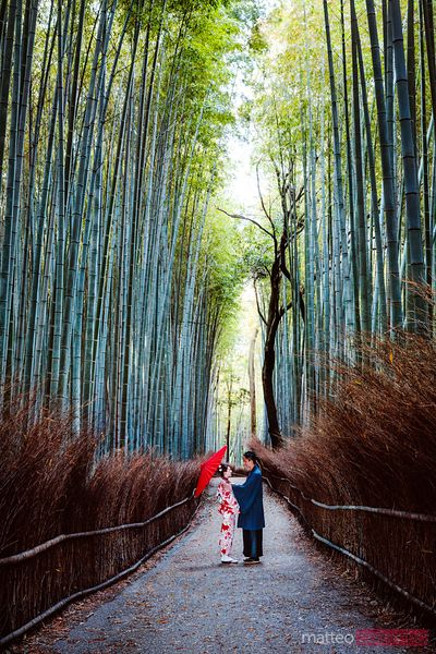 Japanese couple in kimono at bamboo forest, Kyoto, Japan