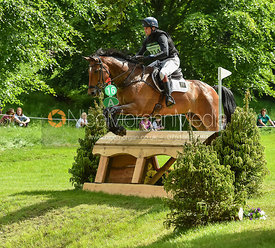 Ben Way and ENDURO A DALRIADA, Equitrek Bramham Horse Trials 2018