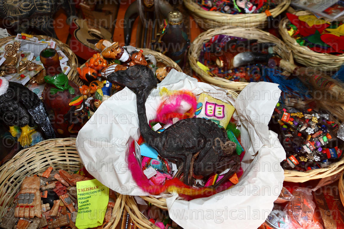 Mesa / offering (called a k'oa) for Pachamama with dried llama foetus (suyu) for sale on stall in Witches Market, La Paz, Bol...