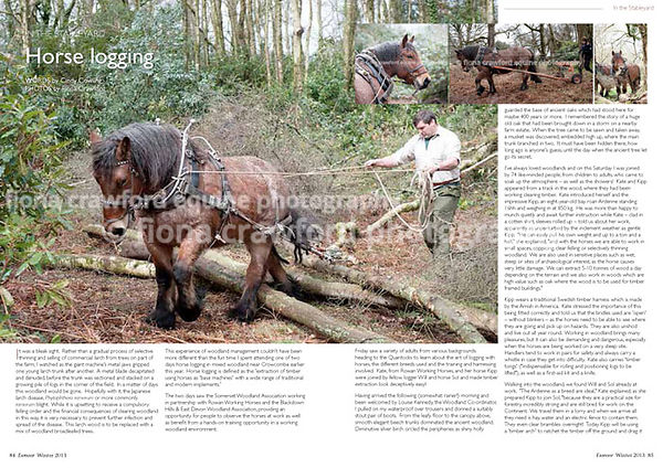 Horse Logging in Somerset
