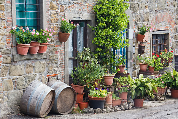 Potted Plants and Doorway Chianti Region Tuscany Italy