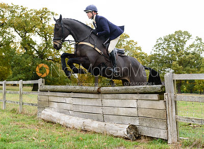 Sophie Lane jumping a hunt jump near Temple Hill.