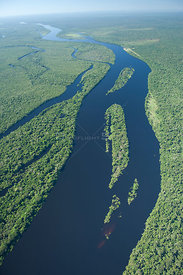 "Aerial view of ""Várzea"" flooded Amazon rainforest on the banks of the Guaporé / Itenez River in Western Rondônia State and Ea..."