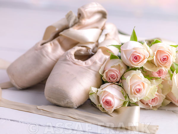 Ballet slippers with bunch of roses on floor