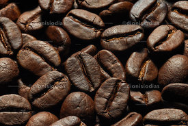 Roasted coffee beans in macro
