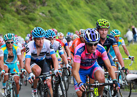 The Peloton on Col D'Aubisque - Tour de France 2011