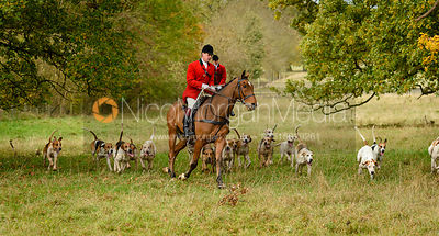 Simon Hunter and the Fitzwilliam hounds near The Kennels.