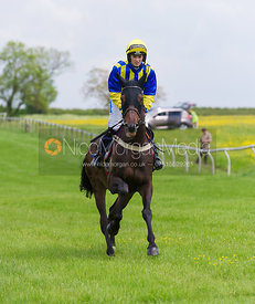 Race 1 PPORA Members - Meynell and South Staffs Point to Point 2014