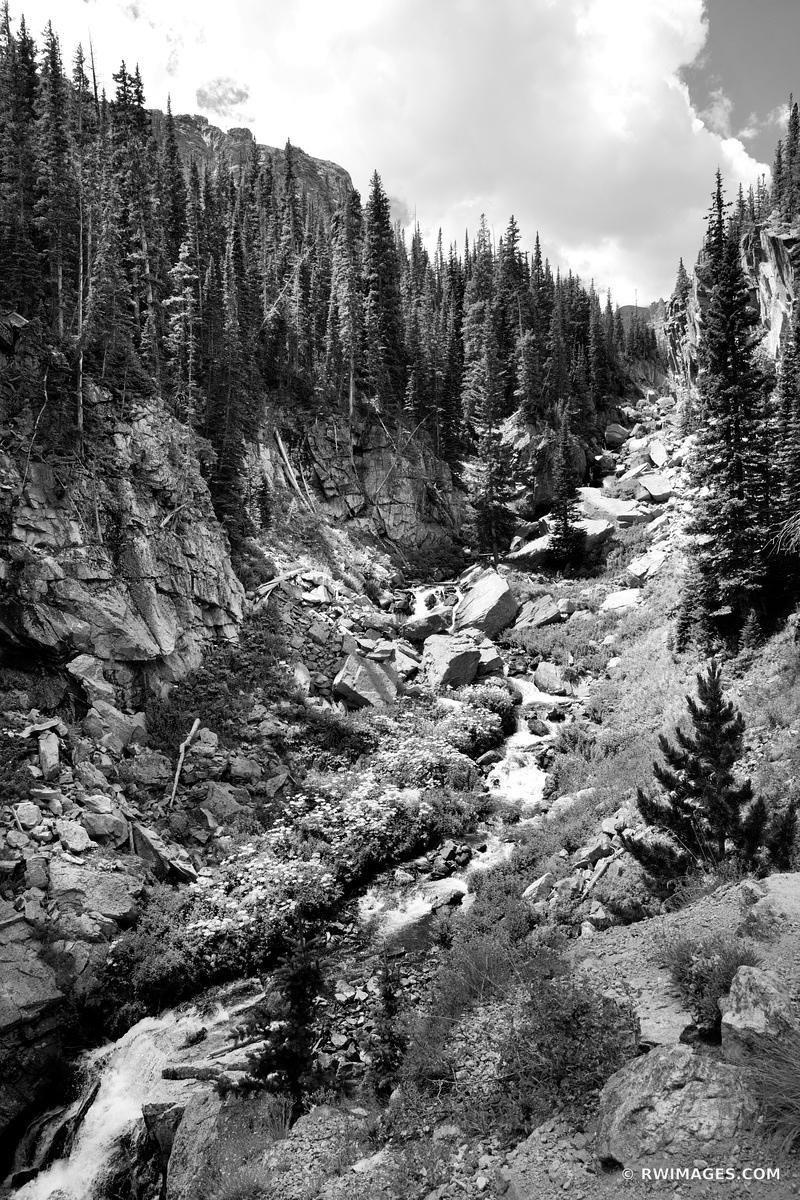 ICY BROOK ROCKY MOUNTAIN NATIONAL PARK COLORADO BLACK AND WHITE