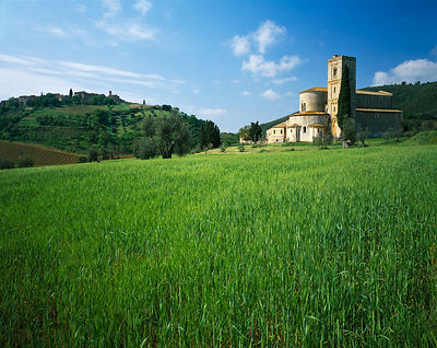 Tuscany all images using 5x4 Large Format camera