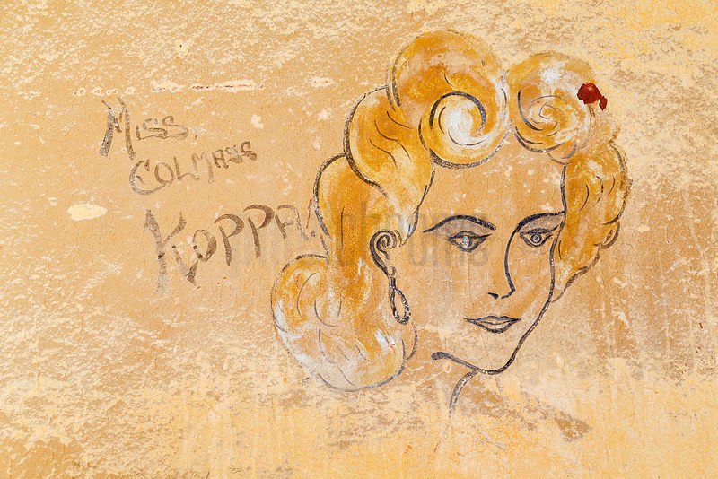 "Mural in Abandoned Home ""Miss Kolmass Koppe"""