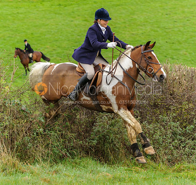 Joanne Rutter - The Cottesmore Hunt at Tilton on the Hill, 9-11-13