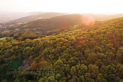 Austria, Lower Austria, Vienna Woods, Biosphere Reserve Vienna Woods, Aerial view of forest at sunrise
