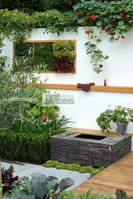 Contemporary garden, garden designer, Mini pond, Slate, Small garden, Tropaeolum majus, Urban garden, Very small pond, Foliage wall, Green wall, Vegetation wall, Wall decoration