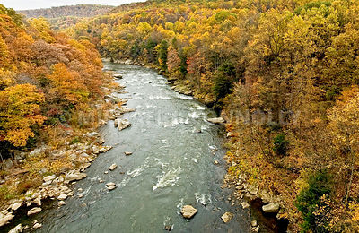 Youghiogheny River In Fall