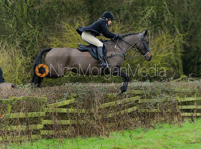 HB jumping a hedge from Town Park Farm