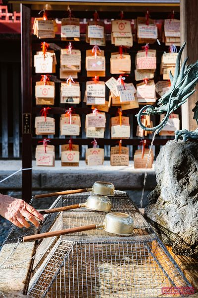 Traditional hand washer in a temple, Tokyo, Japan