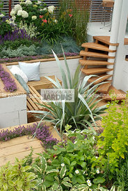 Aromatic plant, Bench, garden designer, Garden furniture, Perennial, Resting area, Small garden, Stair, Terrace, Thyme, Urban...