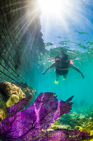 Snorkeling Outside Fort Jefferson in Dry Tortugas National Park