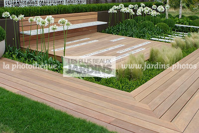 Agapanthus, Bench, Contemporary garden, Perennial, Perennial rhizome, White, Wooden Terrace, Digital, Grasses, Scenery