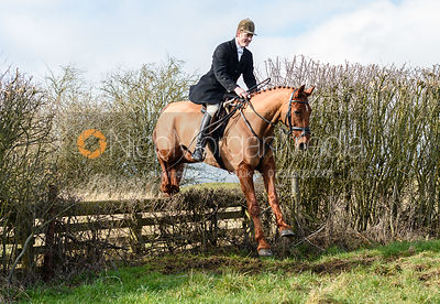 Angus Smales jumping the hunt jump at Newbold. The Cottesmore Hunt at Newbold Farm 16/2