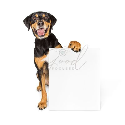 Happy Big Dog Carrying Blank Sign
