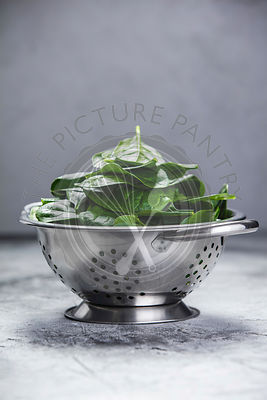 Spinach. Fresh organic spinach leaves in metal colander. Diet, dieting concept. Vegan food, healthy eating. Dark rustic style...