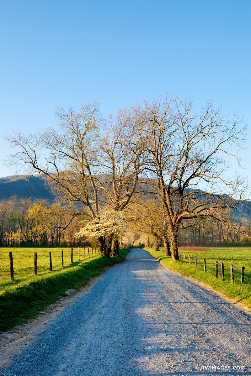 SPARKS LANE CADES COVE SMOKY MOUNTAINS SUNRISE COLOR VERTICAL