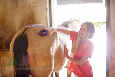 Teenage girl grooming horse in stable
