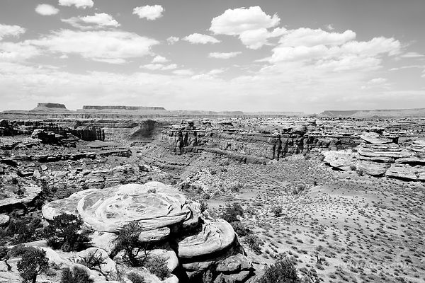 VIEW FROM SLICK ROCK TRAIL THE NEEDLES CANYONLANDS NATIONAL PARK UTAH BLACK AND WHITE