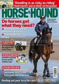 Richard Davison For Horse & Hound