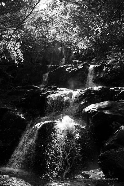 BLACK HOLLOW FALLS SHENANDOAH NATIONAL PARK VIRGINIA BLACK AND WHITE VERTICAL