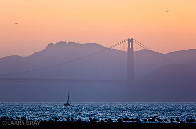 Golden gate bridge against soft orange sky and misty purple hills at sunset in San Francisco, California ,USA
