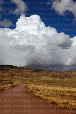 Cumulonimbus clouds rising above dirt road across Serranias de Machaca, La Paz Department, Bolivia
