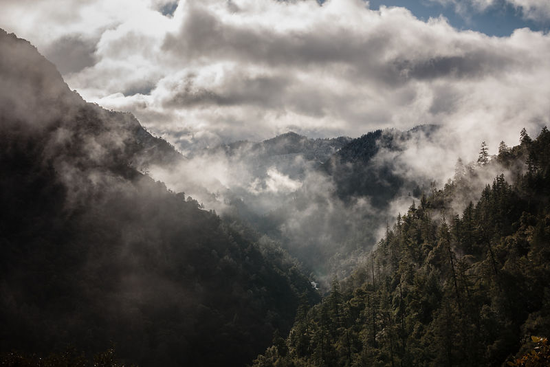 OwenRothPhotography-January_10_2013-Foggy_Mountains_HWY299-5997