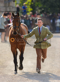 Ben Hobday and GUN A B GOOD - Mitsubishi Motors Badminton Horse Trials 2013