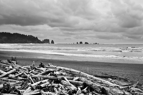 FIRST BEACH LA PUSH WASHINGTON
