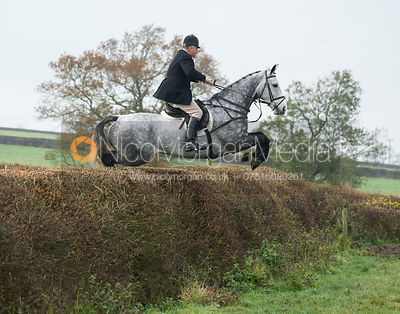 Quorn Hunt at Queniborough 15/11